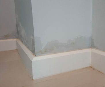 Rising damp in residential home